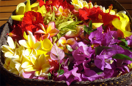 Spa Nusa Dua flowers